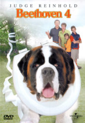 Beethoven 4 le film avec Saint-Bernard