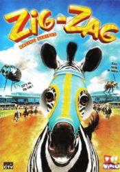 Zig Zag, l'étalon zébré