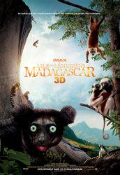 Madagascar, l'île des lémuriens