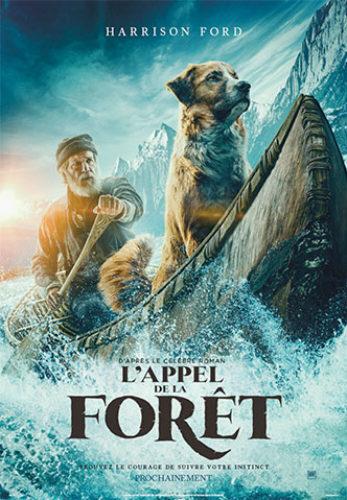 L Appel De La Foret Pour Quel Age Analyse Film Adapte