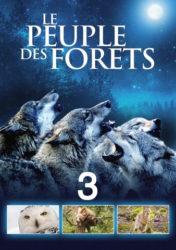 Le Peuple des forêts : Au fil de l'histoire